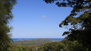 Knoll Lookout