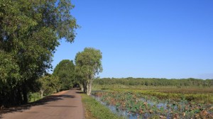 Kakadu Nationalpark III